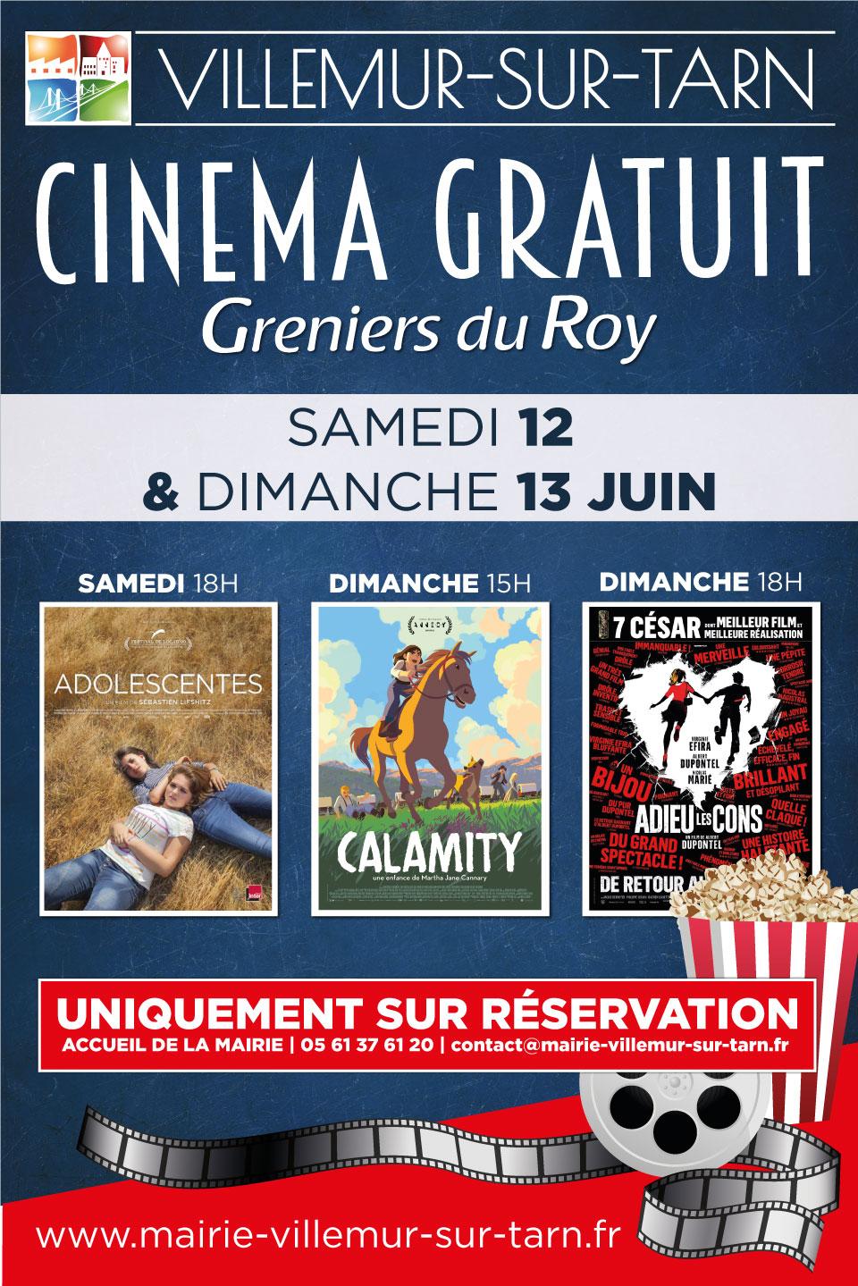 Cinéma gratuit : prochaines séances les 12 et 13 juin – SUR RESERVATION